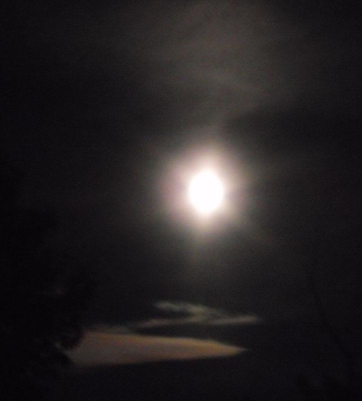 Silver September moon