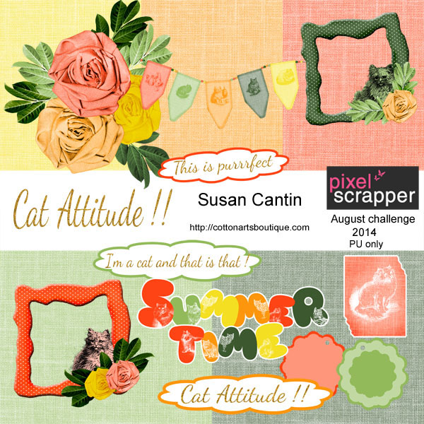 Cat Attitude !!