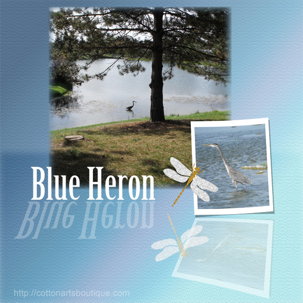 Blue Heron, Reflection challenge