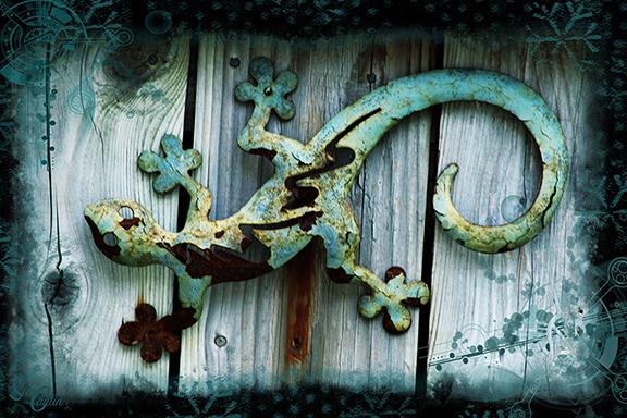 rusty lizard